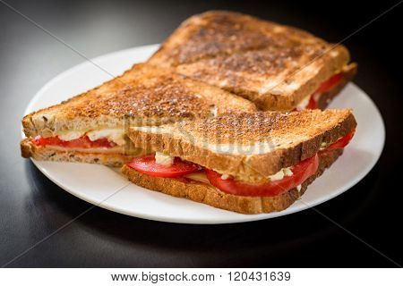 Toasted ham and cheese sandwich on white plate on black background