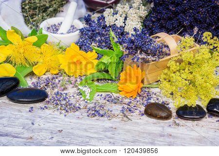 Medicinal Herbs, Globules, Bach Flower Remedies, Healing Stones
