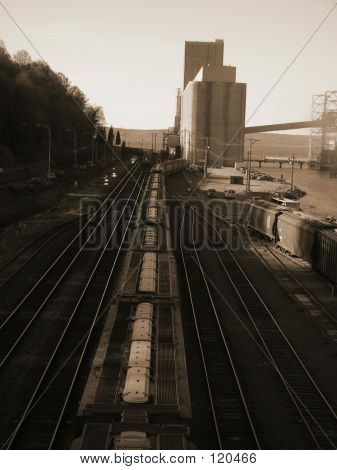 Railroad At Grain Elevator