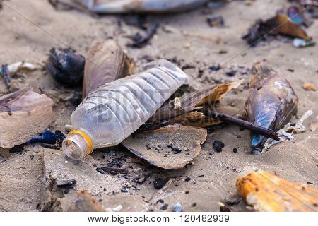 Beach pollution. Plastic bottles and other trash on sea beach