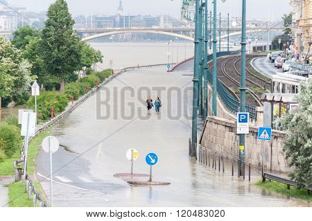 Overflowed Danube At Budapest