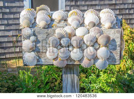 Scallop Shell Mailbox