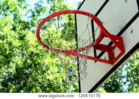 The basketball backboard and ring