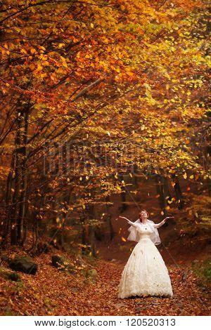 Woman In Wedding Dress Outdoor