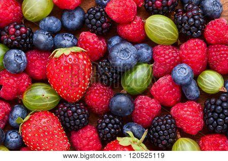 Berries Background macro, selective focus.