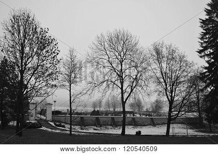 Cemetery, Final Rest, Stara Ves, Czech Republik