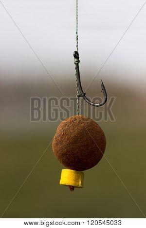 Carp Bait, Boili Hair, Blow Back Rig, Carp Hook