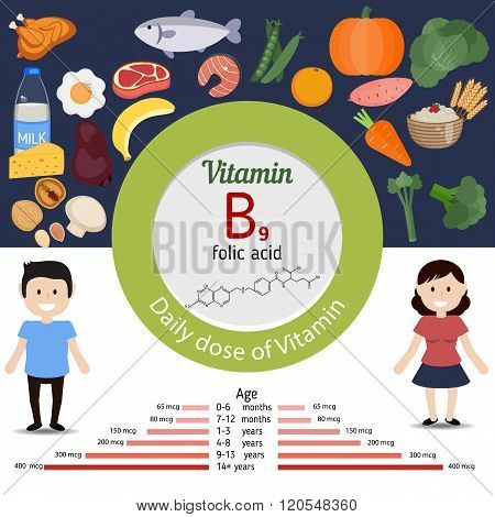 Vitamin B9 Or Folic Acid Infographic