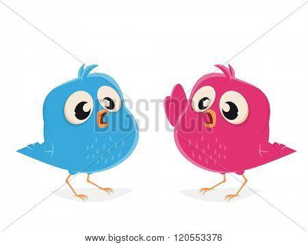 funny cartoon birds talking