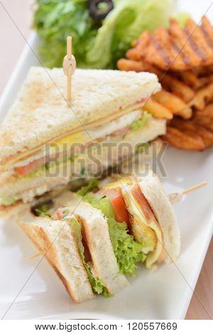 Freshly made club sandwiches