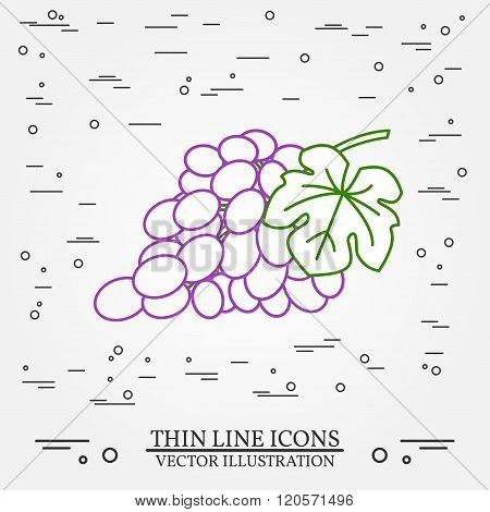 Grapes Thin Line Design. Grapes Pen Icon. Grapes Pen Icon Vector. Grapes Pen Icon Drawing. Grapes Pe