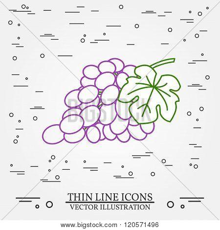 Grapes Thin Line Design. Grapes Pen Icon. Grapes Pen Icon Vector. Grapes Pen Icon Drawing. Grapes Pe