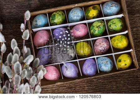 Colored quail eggs