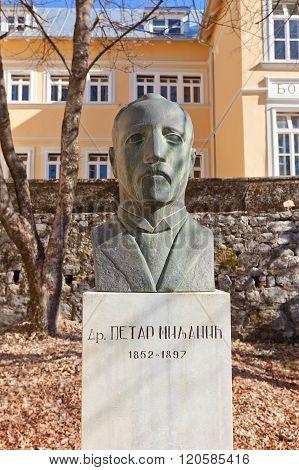 Monument To Doctor Petar Milanic In Cetinje, Montenegro