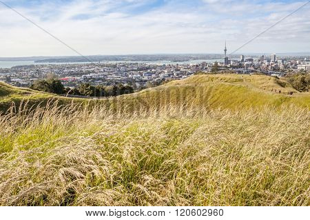 The view point of Auckland's Skyline from Mount Eden.