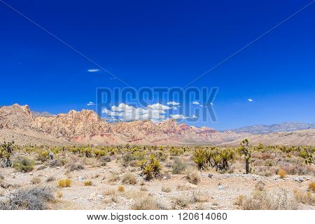 Red Rock Canyon Panoramic, Mojave Desert, Nevada, Usa