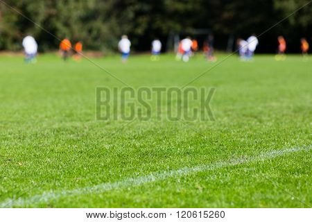 Closeup Of Soccer Turf