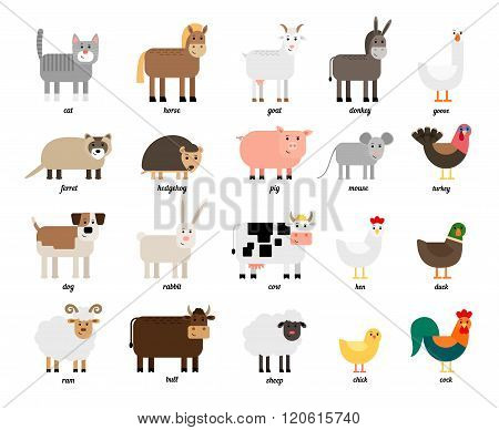 Farm animals and birds