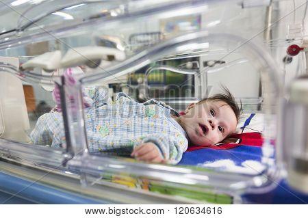 Baby Through An Incubator