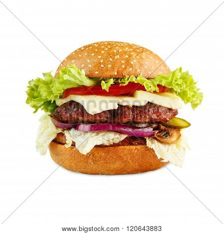 Tasty cheeseburger isolated at white background