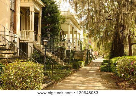 "Sidewalks in Savannah""s Historic District"