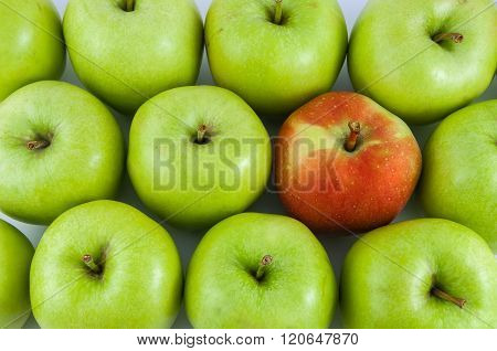 One Red Apple Among Green Apples