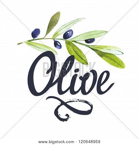 Poster with olive branch with berries and signature.