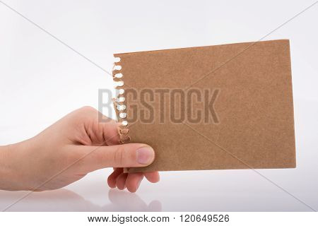 Hand Holding A Paper