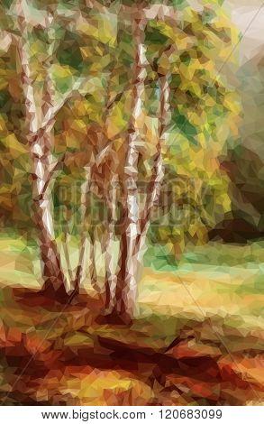 Landscape, Autumn Forest,