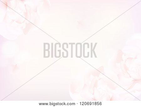 Flower soft background with peonies. Closeup of pink peony flowers blur vector floral background abstract editable template