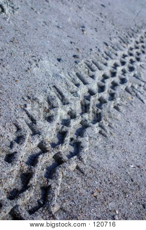 Track In The Sand