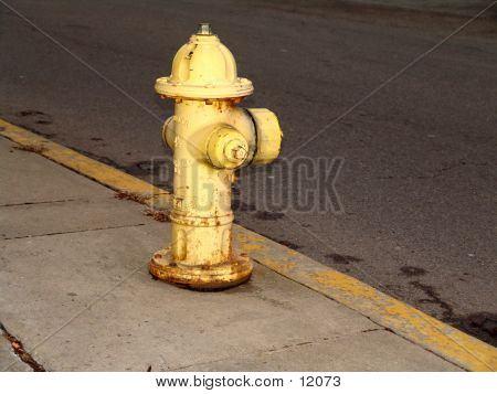 Yellow Fire Hydrant