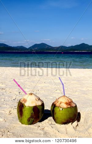 COCKTAIL IN COCONUT