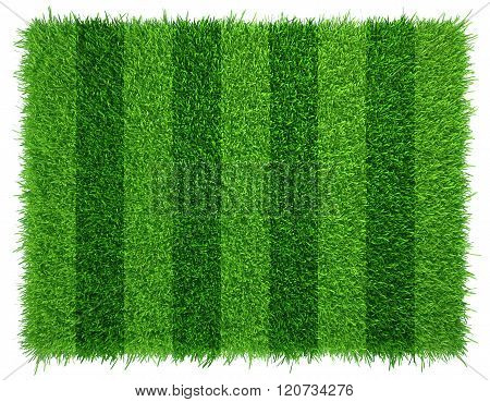 Green grass soccer field background. Realistic textured