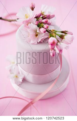 Pink cake with cherryblossoms