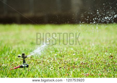 Irrigation Of Green Lawn