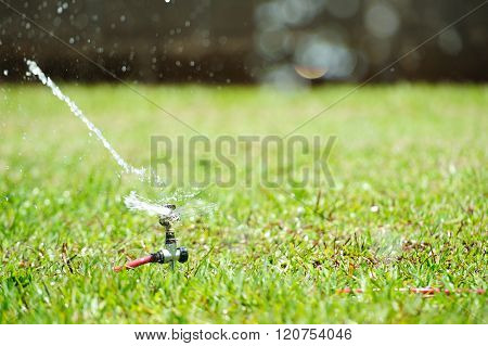 Water Splash From Sprinkler
