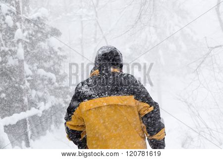 Man Walks Into Forest Snow Storm