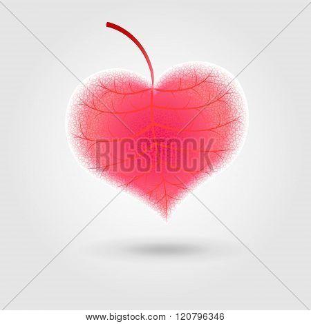 red stylized leaf-heart