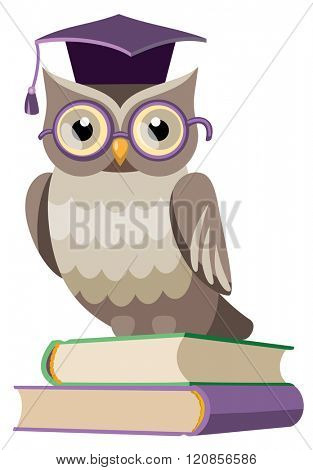 owl in the graduate's cap on the books