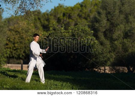 Young Man Practicing Tai-chi In The Park