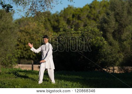 Young Caucasian Man Practicing Tai-chi In The Park
