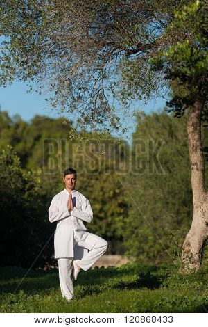 Young Caucasian Man Doing Yoga In The Park