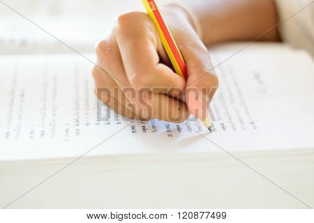 Students Doing Homework And Preparing Exam