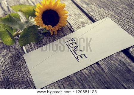 White Piece Of Paper With The Word Peace On It Lying On Textured Wooden Desk