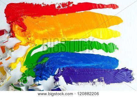 Rainbow Gay Pride Flag