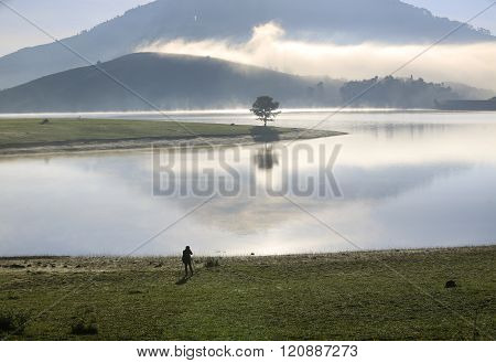 Alone tree in grass field and lake at dawn
