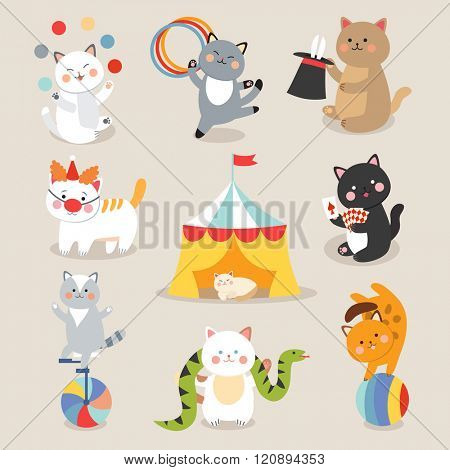 Circus cats vector. Set of cheerful circus cats. Vector illustration for childrens with circus cats. Isolated cartoon animals in circus. Cute Circus playing cats.
