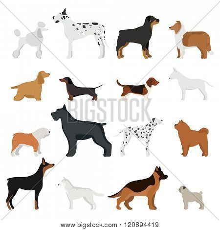 Dog breed vector illustration. Dog breed isolated on white background. Dog breed vector icon illustration. Dog breed isolated vector. Dog breed flat silhouette