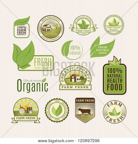 Eco badge organic food vector illustration. Eco badge organic food isolated on white background. Eco badge organic food vector icon illustration. Eco badge organic food isolated vector. Eco badge